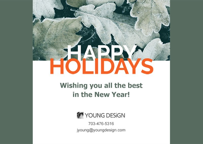 YD holiday campaign