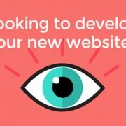 Looking to develop your new website?