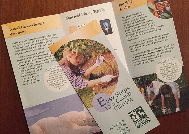 NWF brochure