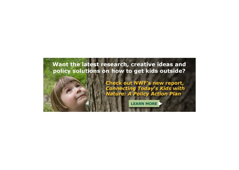 NWF web banner