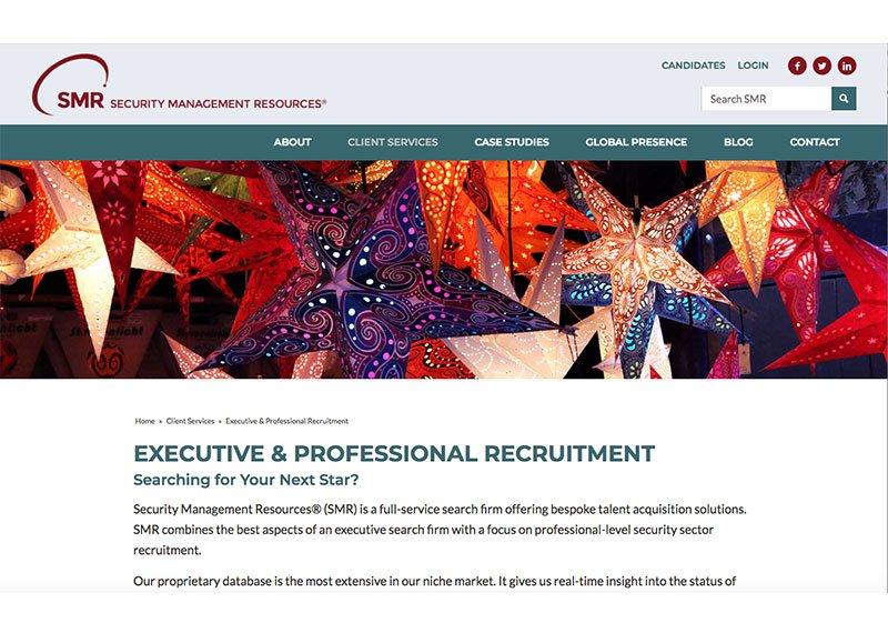 SMR web design services page
