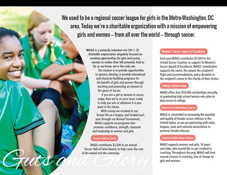 WAGS brochure design